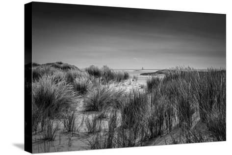 The Netherlands, Frisia, Terschelling, Dunes, Beach, Sea-Ingo Boelter-Stretched Canvas Print