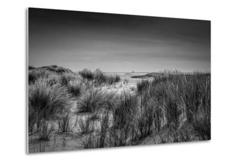 The Netherlands, Frisia, Terschelling, Dunes, Beach, Sea-Ingo Boelter-Metal Print