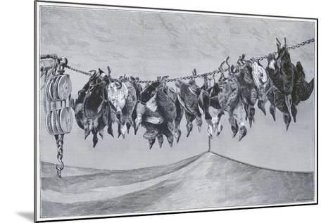 Game Shot Hanging from the Line--Mounted Giclee Print