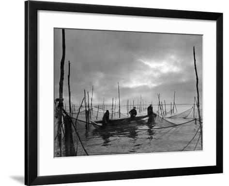 Laying Out Pursenets-A. Aubrey Bodine-Framed Art Print