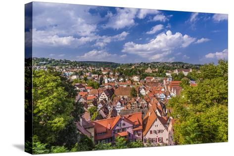 Germany, Baden-Wurttemberg, Neckartal (Neckar Valley), TŸbingen, Village-Udo Siebig-Stretched Canvas Print