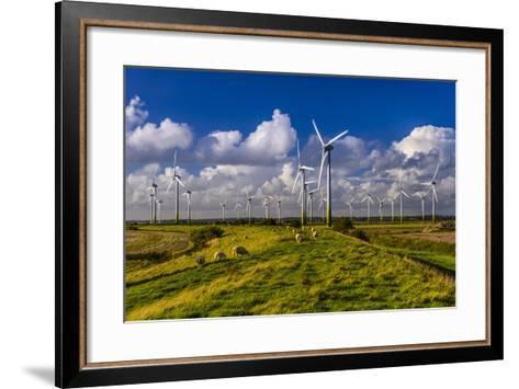 Germany, Schleswig-Holstein, North Frisia, North Frisian Marsh, Breklum-Udo Siebig-Framed Art Print