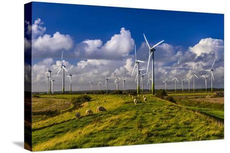 Germany, Schleswig-Holstein, North Frisia, North Frisian Marsh, Breklum-Udo Siebig-Stretched Canvas Print