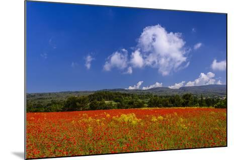 France, Provence, Vaucluse, Roussillon, Poppy Field Against Monts De Vaucluse-Udo Siebig-Mounted Photographic Print