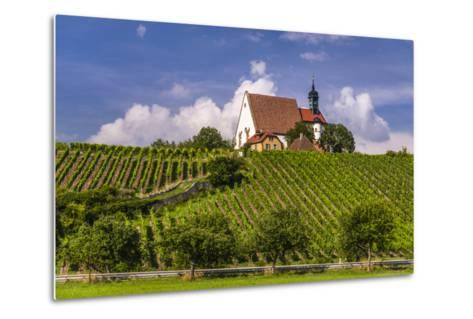 Germany, Bavaria, Lower Franconia, Mainfranken, Volkach, Pilgrimage Church Maria in the Vineyard-Udo Siebig-Metal Print