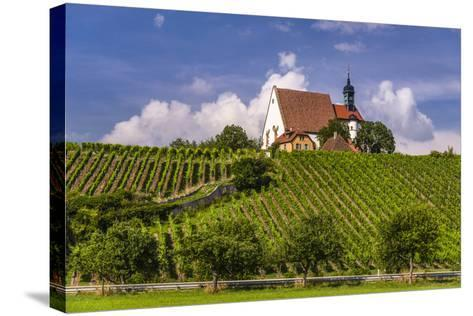 Germany, Bavaria, Lower Franconia, Mainfranken, Volkach, Pilgrimage Church Maria in the Vineyard-Udo Siebig-Stretched Canvas Print