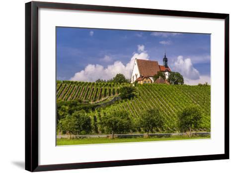 Germany, Bavaria, Lower Franconia, Mainfranken, Volkach, Pilgrimage Church Maria in the Vineyard-Udo Siebig-Framed Art Print