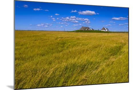 Germany, Schleswig-Holstein, North Frisia, Reu§enkšge, Hamburg Hallig-Udo Siebig-Mounted Photographic Print