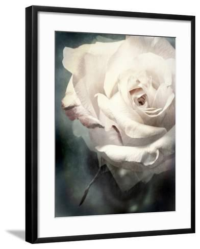 Flower of a White Rose, Texture, Composing-Alaya Gadeh-Framed Art Print