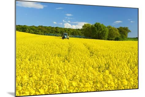 Conventional Agriculture, Farmer Spreading Pesticides on the Rape Field by Tractor-Andreas Vitting-Mounted Photographic Print