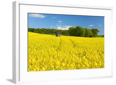 Conventional Agriculture, Farmer Spreading Pesticides on the Rape Field by Tractor-Andreas Vitting-Framed Art Print
