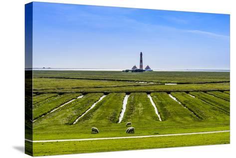 Germany, Schleswig-Holstein, North Frisia, Peninsula Eider (River)Stedt, Westerhever-Udo Siebig-Stretched Canvas Print