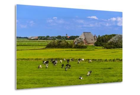 Germany, Schleswig-Holstein, North Frisia, Peninsula Eider (River)Stedt, Westerhever-Udo Siebig-Metal Print
