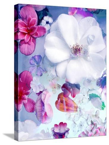 Pink and White Blossoms in Blue Water-Alaya Gadeh-Stretched Canvas Print