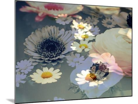 Colorful Photographic Layer Work of Blossoms-Alaya Gadeh-Mounted Photographic Print