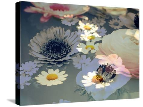 Colorful Photographic Layer Work of Blossoms-Alaya Gadeh-Stretched Canvas Print