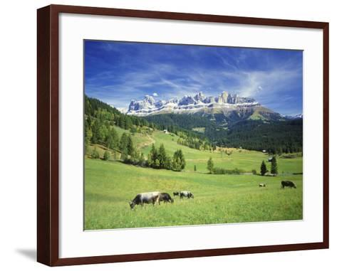 Italy, South Tyrol, Rose Garden Area, Nova Levante, Geiger Alm Rosengarten Group-Udo Siebig-Framed Art Print