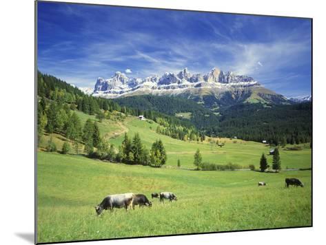 Italy, South Tyrol, Rose Garden Area, Nova Levante, Geiger Alm Rosengarten Group-Udo Siebig-Mounted Photographic Print