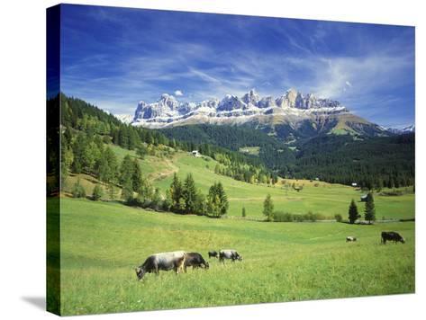 Italy, South Tyrol, Rose Garden Area, Nova Levante, Geiger Alm Rosengarten Group-Udo Siebig-Stretched Canvas Print