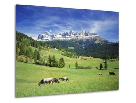 Italy, South Tyrol, Rose Garden Area, Nova Levante, Geiger Alm Rosengarten Group-Udo Siebig-Metal Print
