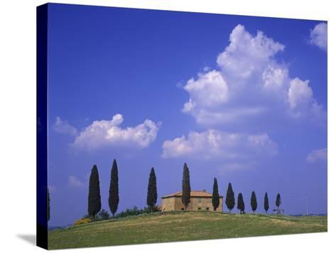 Italy, Tuscany, Siena, Pienza, Grange Province-Udo Siebig-Stretched Canvas Print