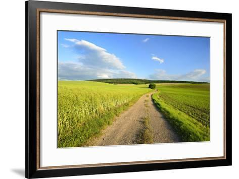 Germany, Thuringia, GrŠfentonna, Scenery in the Fahner Height-Andreas Vitting-Framed Art Print