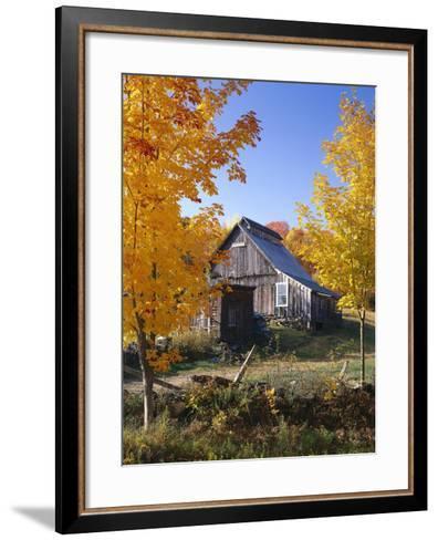 USA, Vermont, House, Old, Maple Trees, Autumn-Thonig-Framed Art Print