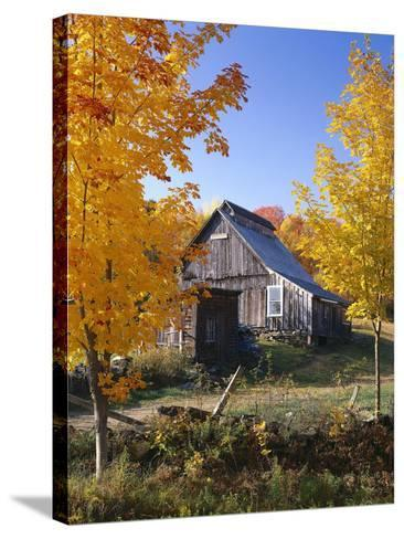 USA, Vermont, House, Old, Maple Trees, Autumn-Thonig-Stretched Canvas Print