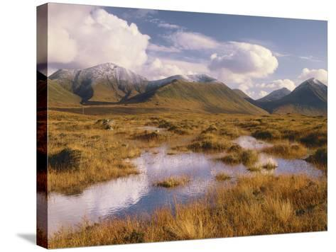 Great Britain, Scotland, Inner Hebrides, Island Skye, Moorland, Moor, Cuillin Hills-Thonig-Stretched Canvas Print
