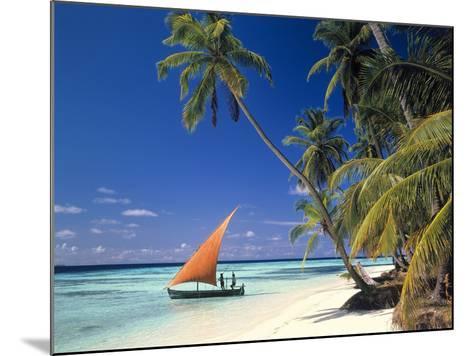Malediven, Palmenstrand-Thonig-Mounted Photographic Print