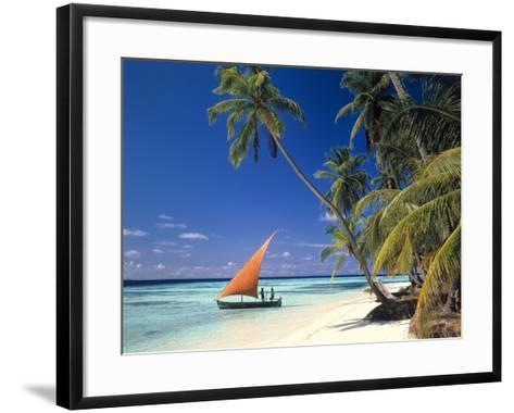 Malediven, Palmenstrand-Thonig-Framed Art Print