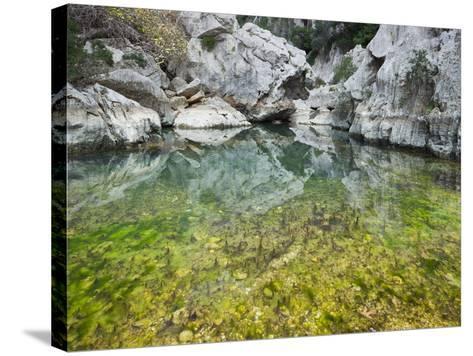 Spain, Majorca, Serra De Tramuntana, Sat. Calobra, Torrent De Par Ice, Water Water Basin, Algae-Rainer Mirau-Stretched Canvas Print