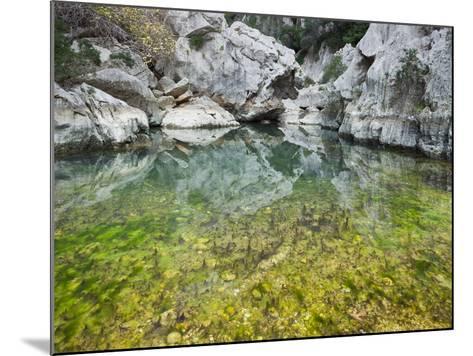 Spain, Majorca, Serra De Tramuntana, Sat. Calobra, Torrent De Par Ice, Water Water Basin, Algae-Rainer Mirau-Mounted Photographic Print