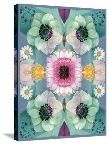 Composing, Symmetrical Arrangement of Flowers in Pastel Shades-Alaya Gadeh-Stretched Canvas Print