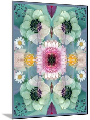Composing, Symmetrical Arrangement of Flowers in Pastel Shades-Alaya Gadeh-Mounted Photographic Print