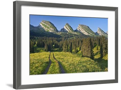 Switzerland, St. Gallen, Chur Prince, Alpine Grassland, Lanes-Rainer Mirau-Framed Art Print