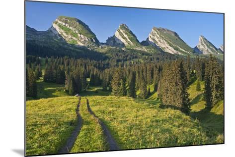 Switzerland, St. Gallen, Chur Prince, Alpine Grassland, Lanes-Rainer Mirau-Mounted Photographic Print