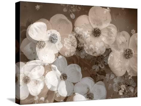 Floral Montage-Alaya Gadeh-Stretched Canvas Print