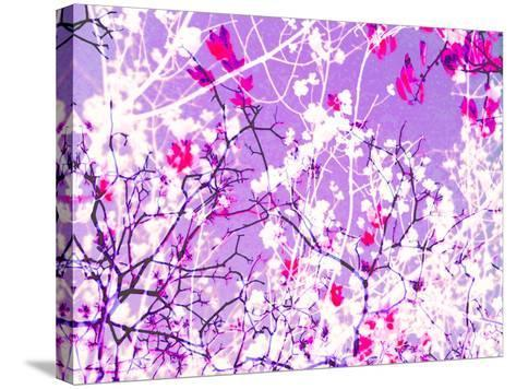 Photomontage of Trees in Purple Tones-Alaya Gadeh-Stretched Canvas Print