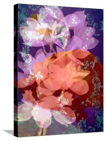 Floral Montage, Photographic Layer Work-Alaya Gadeh-Stretched Canvas Print