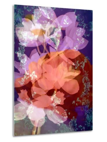 Floral Montage, Photographic Layer Work-Alaya Gadeh-Metal Print