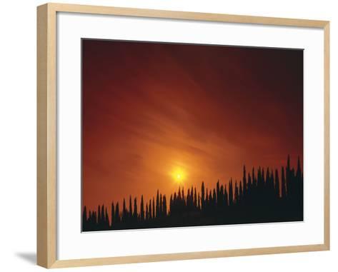 Italy, Tuscany, Cypresses, Evening Sun-Thonig-Framed Art Print