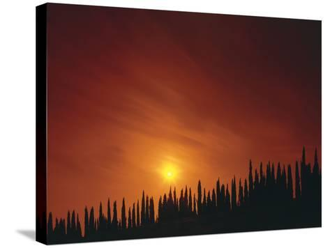 Italy, Tuscany, Cypresses, Evening Sun-Thonig-Stretched Canvas Print