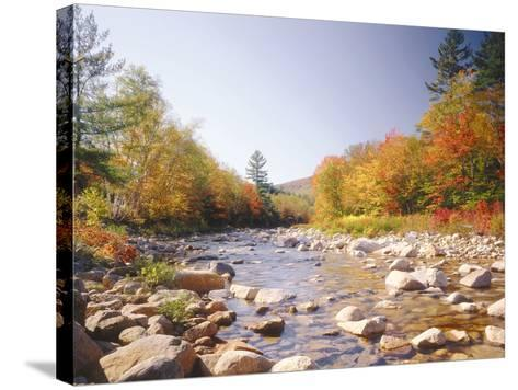 USA, New Hampshire, White Mountains, Swift River, Landscape, Autumn-Thonig-Stretched Canvas Print