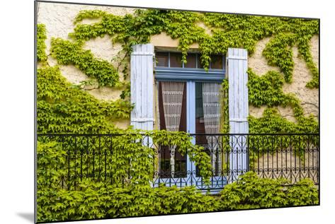 France, Provence, Vaucluse, Saint-Saturnin-L?s-Apt, Architecture Detail-Udo Siebig-Mounted Photographic Print