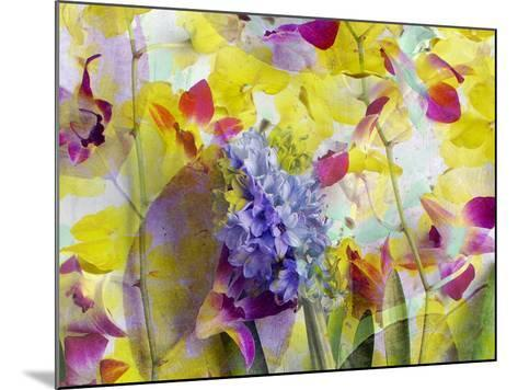 An Abstract Multicolor Floral Montage Photographic Layer Work-Alaya Gadeh-Mounted Photographic Print