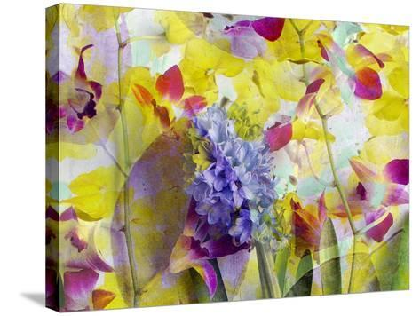An Abstract Multicolor Floral Montage Photographic Layer Work-Alaya Gadeh-Stretched Canvas Print