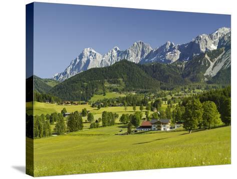 Ramsau, Dachstein, Summer Meadow, Styria, Austria-Rainer Mirau-Stretched Canvas Print