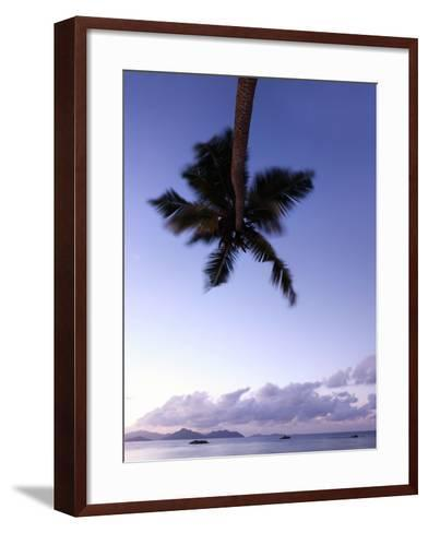 The Seychelles, Evening Mood, View to Praslin, Palm, Panorama-Catharina Lux-Framed Art Print