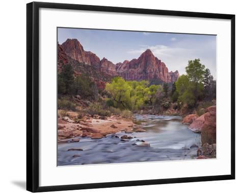The Watchman, Cottonwood, Virgin River, Zion National Park, Utah, Usa-Rainer Mirau-Framed Art Print